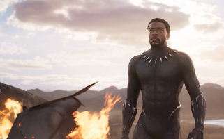 Black Panther is more of a standalone movie in the MCU universe, but it still makes its mark.