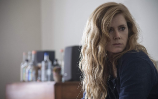 In honour of Amy Adams' 44th Birthday here's a countdown of her top 5 greatest roles!