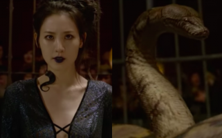 So Nagini's an Asian woman now? Who let her do that?
