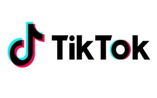 TikTok has partnered with Internet Matters to make the platform safer.