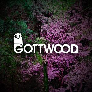 Gottwood festival to return for fourth year.