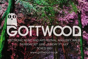 Budding student DJs have the chance to play at Gottwood festival through their student DJ competition.