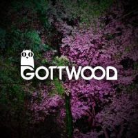 Gottwood festival is described as 'the mystical little party in the middle of the woods'. In its fourth year, it is once again preparing to bring its unique atmosphere to Wales.